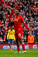Daniel Sturridge of Liverpool celebrates scoring his first goal of the game during the Barclays Premier League match at Anfield, Liverpool<br /> Picture by David Horn/Focus Images Ltd +44 7545 970036<br /> 08/02/2014