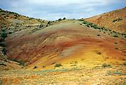 Multi-colored hill, vermillion cliffs, Colorado