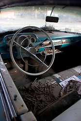 03 November, 2005.  New Orleans, Louisiana. Post Katrina. <br /> The once flooded interior of a classic Chevrolet amidst the remains of debris strewn Oak Grove trailer park in Saint Bernard parish just south of New Orleans. Hurricane Katrina caused a 20ft tidal surge to sweep over the land, devastating much of the parish.<br /> Photo; ©Charlie Varley/varleypix.com