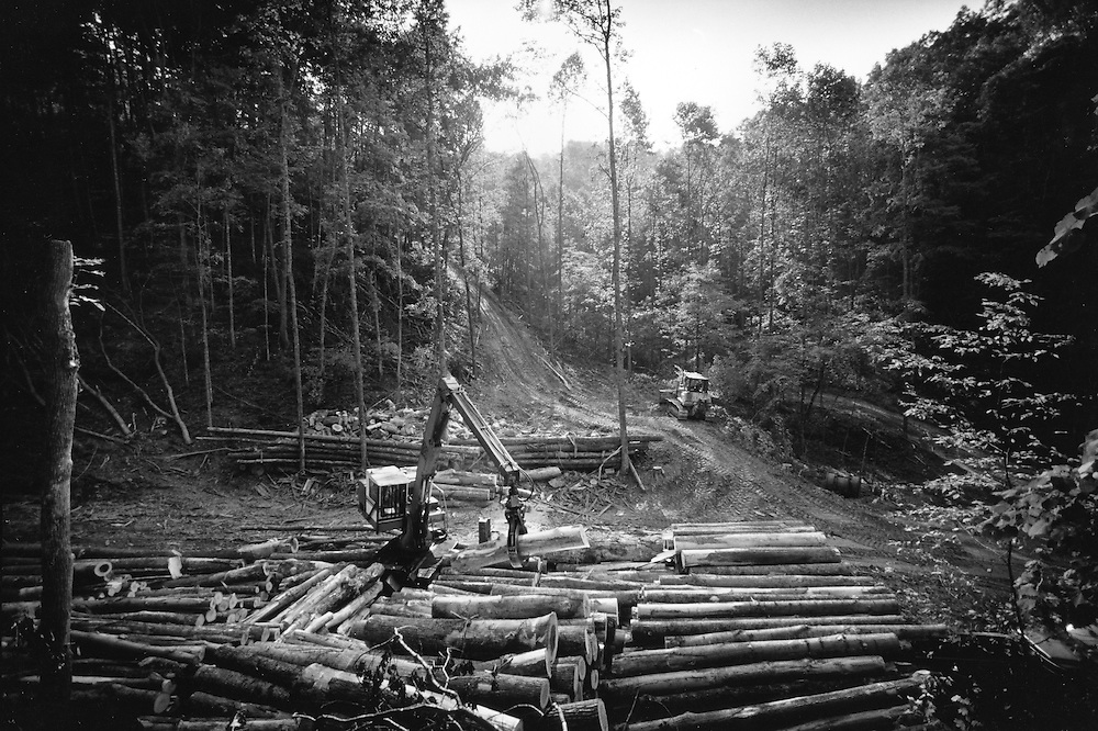 The Boulyard' logging site near Jane Lew, WV.
