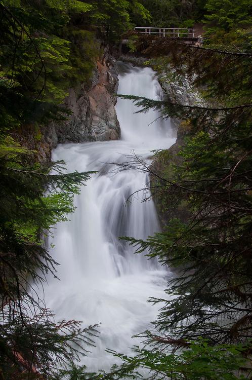 Ohanapecosh Falls, Mt. Rainier National Park, Washington, US