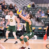 2nd year libero Dryden Wall (18) of the Regina Cougars in action during Men's Volleyball home game on February 10 at Centre for Kinesiology, Health and Sport. Credit: Arthur Ward/Arthur Images