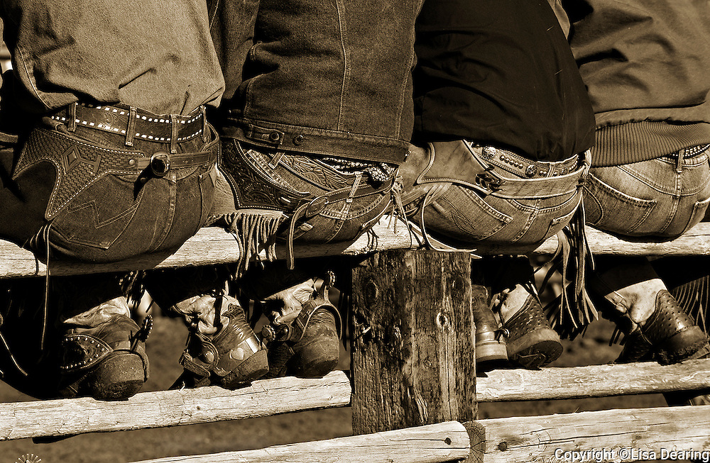 Cowboys Wranglers