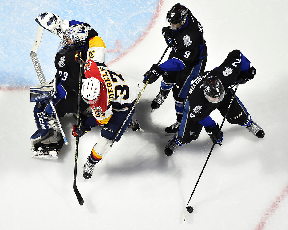 Bailey Webster of the Saint John Sea Dogs in Game 4 of the 2017 MasterCard Memorial Cup against the Erie Otters on Monday May 22, 2017 at the WFCU Centre in Windsor, ON. Photo by Aaron Bell/CHL Images
