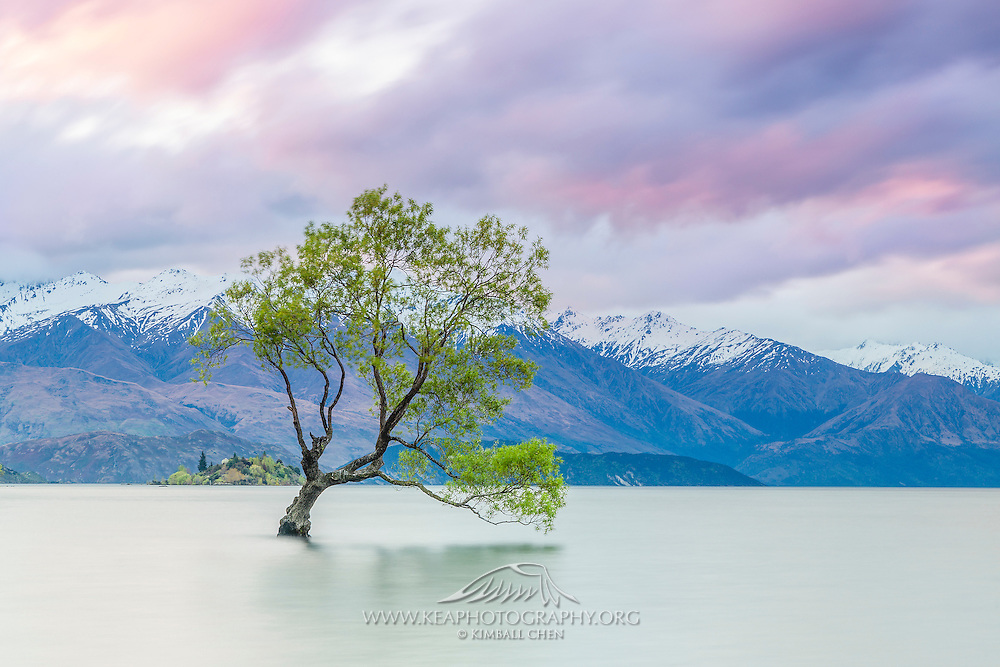 A splash of purple and pink at sunset graces the snow-capped mountains at Lake Wanaka, New Zealand.