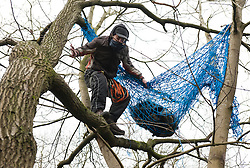 © Licensed to London News Pictures.  002/02/2015. Bristol, UK.  Campaigners against the Bristol Metrobus junction which is planned to replace allotments by the M32 have occupied some trees due to be cut down.  Some campaigners are sitting in nets and platforms in the trees but expect an attempt will be made to evict them.  Security contracters are putting up fencing. The land is exceptionally fertile and has traditionally been used for market gardens and allotments, but part has been designated for a bus junction off the motorway to help improve transport in Bristol.  Bristol is this year's European Green Capital.  Photo credit : Simon Chapman/LNP
