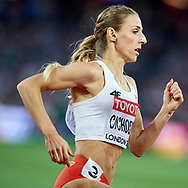 Great Britain, London - 2017 August 13: Angelika Cichocka (SKLA Sopot) of Poland competes in women's 800 meters final during IAAF World Championships London 2017 Day 10 at London Stadium on August 13, 2017 in London, Great Britain.<br /> <br /> Mandatory credit:<br /> Photo by © Adam Nurkiewicz<br /> <br /> Adam Nurkiewicz declares that he has no rights to the image of people at the photographs of his authorship.<br /> <br /> Picture also available in RAW (NEF) or TIFF format on special request.<br /> <br /> Any editorial, commercial or promotional use requires written permission from the author of image.