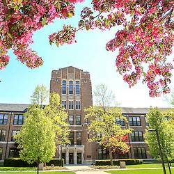 SPRING SCENICS- north campus
