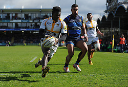 Christian Wade right wing for Wasps runs in to score a try. - Mandatory by-line: Alex James/JMP - 16/04/2016 - RUGBY - Sixways Stadium - Worcester, England - Worcester Warriors v Wasps - Aviva Premiership