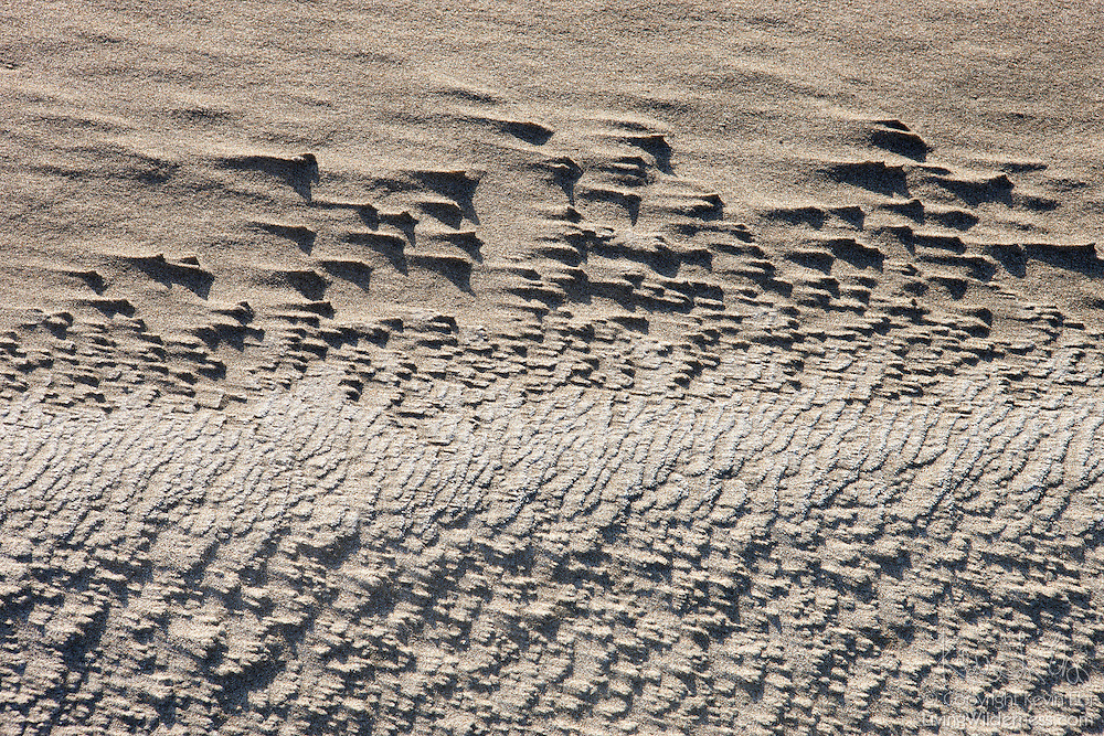Streaking patterns develop on the sandy beach at Bandon, Oregon as strong wind blows over rough patches.