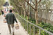 A Chinese man strolls through the Yuen Po Street Bird Garden with his caged songbirds in Mong Kok, Kowloon, Hong Kong.
