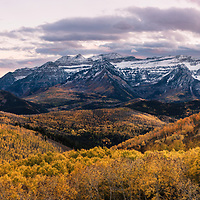 Timpanogos and golden aspens during sunset.