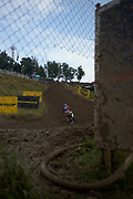 Herlings through the fence.