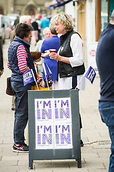 Pictured: Tessa Tennant  was keen for everybody to get involved.<br /> <br /> Volunteers were out in Peebles today to remind everybody to register to make their voice heard in the up coming EU referendum<br /> <br /> <br /> <br /> Ger Harley | EEm 4 June 2016