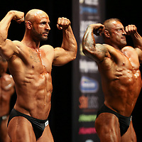 DM i Fitness og Bodybuilding 2014 - Herning