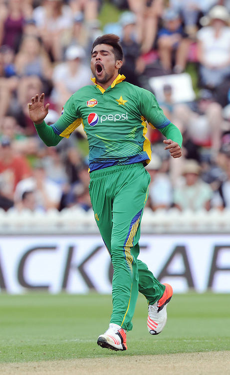 Pakistan's Mohammad Amir reacts while bowling against New Zealand in the 1st ODI International Cricket match at Basin Reserve, Wellington, New Zealand, Monday, January 25, 2016. Credit:SNPA / Ross Setford