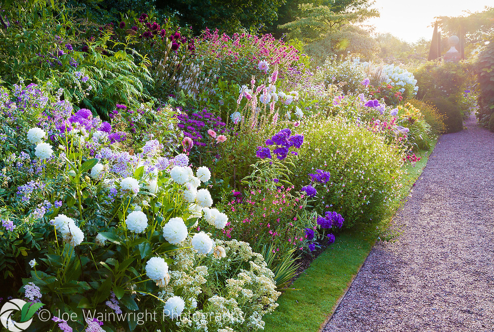 The main perennial border at Wollerton Old Hall Garden, Shropshire, photographed in early morning, in July