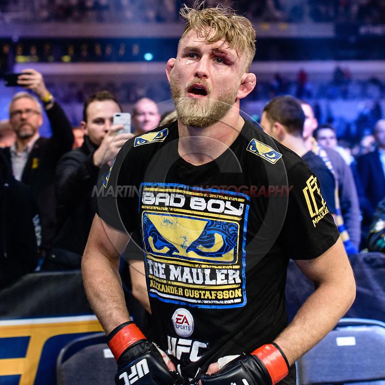 """STOCKHOLM, SWEDEN, JANUARY 24, 2015: Alexander Gustafsson during """"UFC on Fox 14: Gustafsson vs. Johnson"""" inside Tele2 Arena in Stockholm, Sweden"""