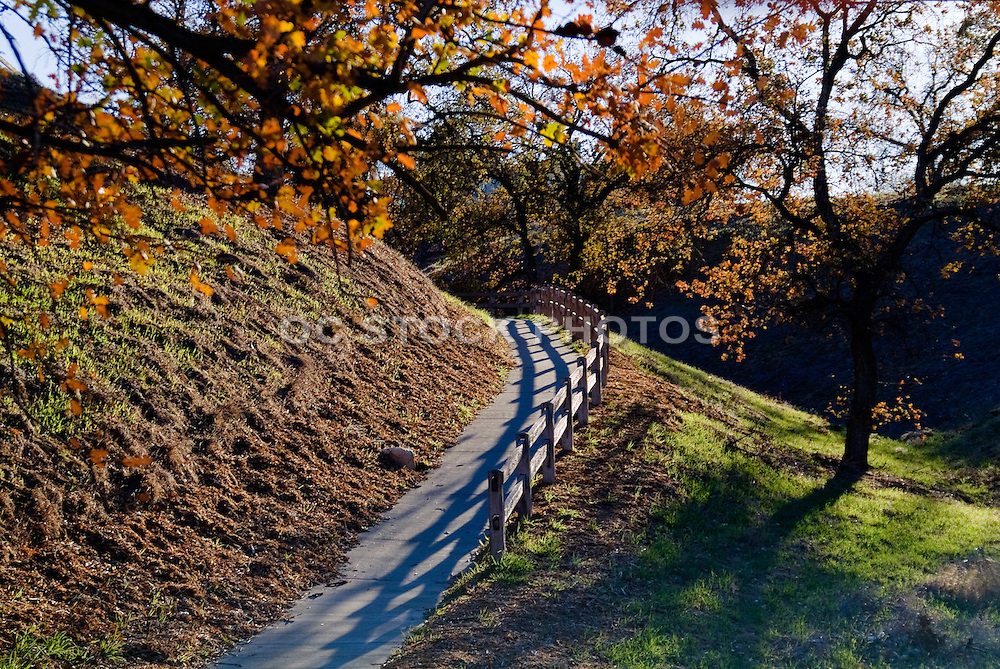 California Golden Oaks At Summit Park In Santa Clarita California