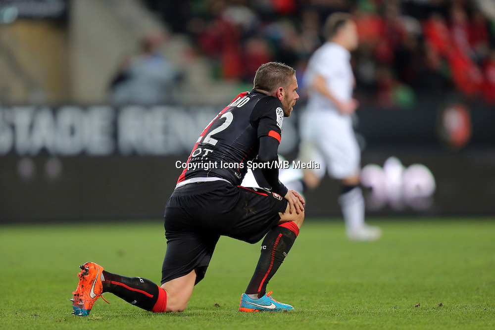 Sylvain ARMAND  - 25.01.2015 - Rennes / Caen  - 22eme journee de Ligue1<br />