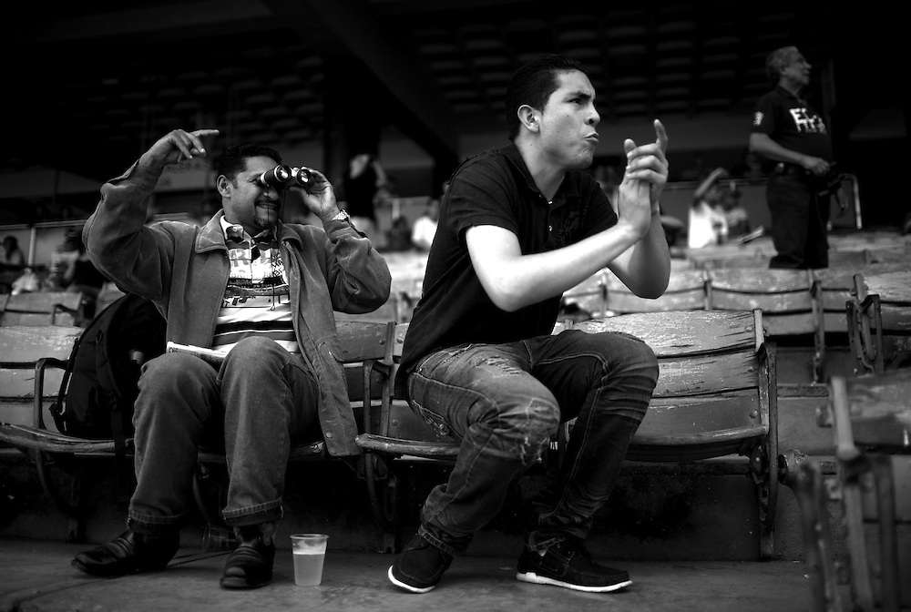 In this photo taken Nov. 28, 2010, fans gesture while watching a horse race during the Caribbean Classic Series at the Rinconada racetrack in Caracas, Venezuela.