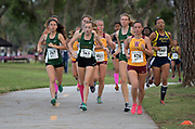 Nov 1, 2017; Long Beach, CA, USA; Sydney Carlson (267) and Olivia Boyce (263) of Long Beach Poly, Sabrina Del Bello of Long Beach Wilson (426) and Tiana Prince of Millikan (195) run in the girls race during the Moore League cross country finals at Heartwell Park.
