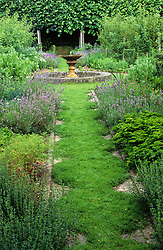 A scented chamomile path edged with Lavandula angustifolia 'Hidcote' at Clinton Lodge.  Chamaemelum nobile 'Treneague'