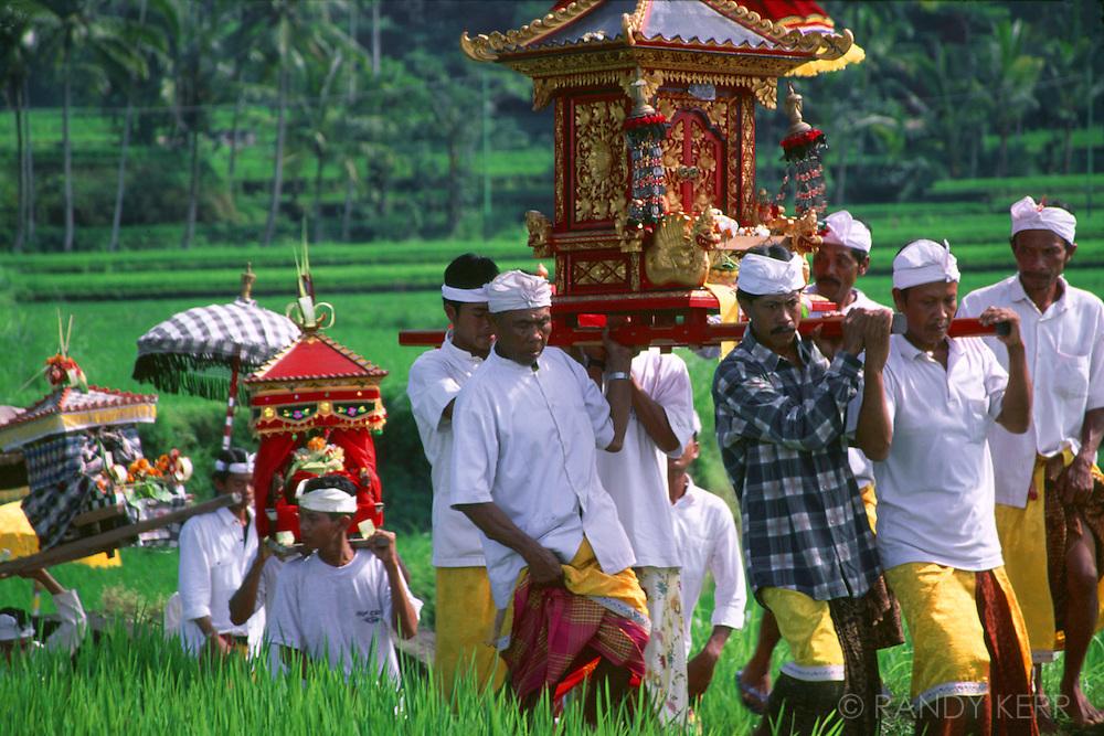 Ceremonial Procession on Bali