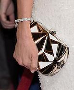OSCARS 2014 - Fashion - Purses