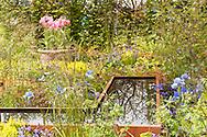 RHS Malvern Spring Show 2016