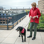 WASHINGTON, DC - OCT07:  Charity Struthers (right) holds her dog Benny, on the roof of the Park Chelsea Apartments, October 7, 2016, in Washington, DC. As new apartment buildings continue sprouting around downtown DC, developers know that a large percentage of renters in the city have dogs and make their choices of buildings based largely on pet-friendliness. So they go out of their way to be welcoming to dogs.  (Photo by Evelyn Hockstein/For The Washington Post)