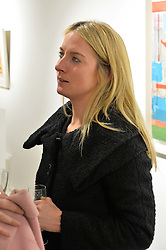 ARABELLA BURWELL at a private view entitled Stop Making Sense featuring work by Georgiana Anstruther and Carol Corell held at Lacey Contemporary, 8 Clarendon Cross, London on 9th March 2016.