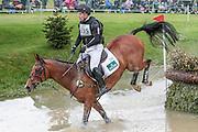 CELTIC FORTUNE ridden by sJamie Atkinson at Bramham International Horse Trials 2016 at  at Bramham Park, Bramham, United Kingdom on 11 June 2016. Photo by Mark P Doherty.