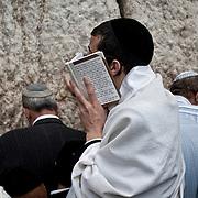 Jérusalem, israël, le jeudi 21 avril 2011 - près de 10 000 fidèles étaient rassemblés au Mur des Lamentations pour la bénédiction des Cohanim (prêtres juifs) au quatrième jour de Pessah (Pâques juive). Un fidèle récite ses prières.