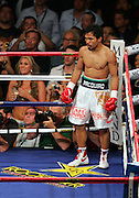 Manny Pacquiao waits in the corner after knocking out Ricky Hatton in the second round of their Light Welterweight title fight at the MGM Grand, Las Vegas , Nevada, 2nd May 2009.