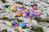 Eggs in the snow before the kids got to them..