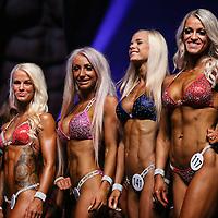 FITN: Bikini Fitness - Final - Newcomers 2015