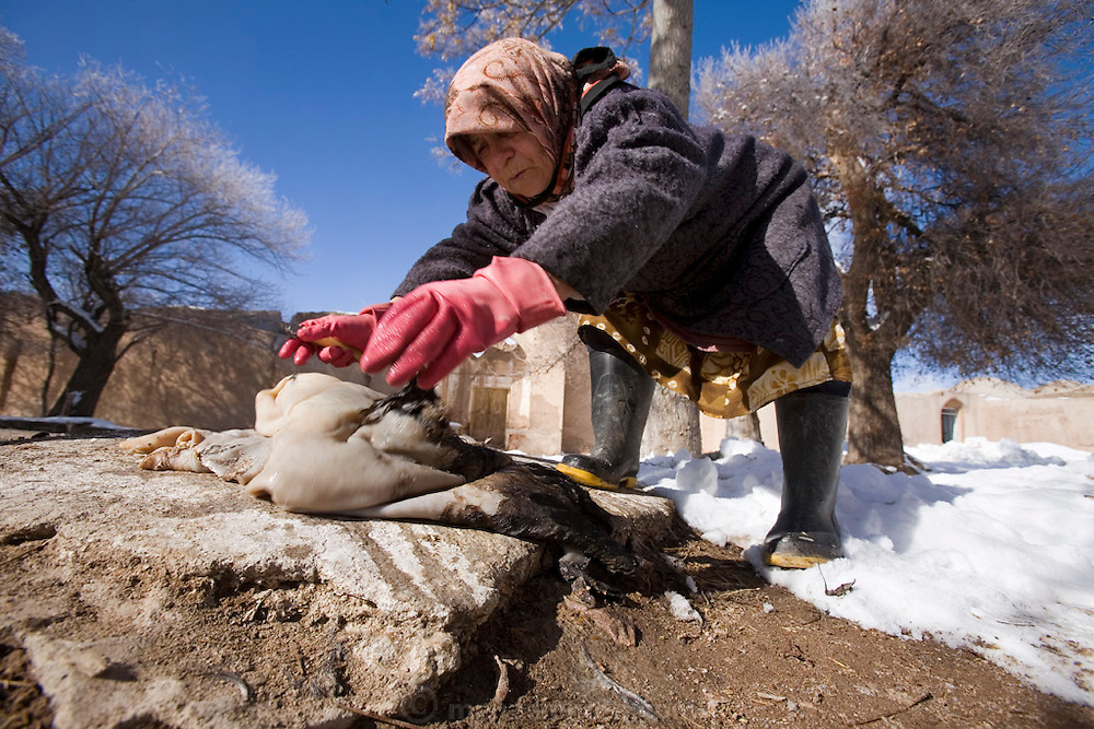 A woman scrapes a sheepskin of its hair in the snow in Ghayoumabad village. She will use the sheepskin to make a bag to hold traditional yogurt. Her village is near the highway between Yazd and Esfahan in the foothills of the Zagros Mountains of central Iran.