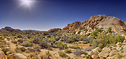 USA, California, Joshua Tree National Park.