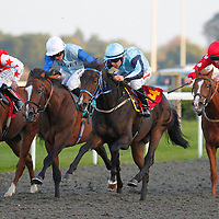 Kempton 4th October