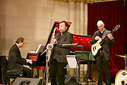 Vienna, Austria. Cocktail reception hosted by Mayor Michael Häupl at City Hall for international scientists and researchers living and working in Vienna.<br /> Jazz music.