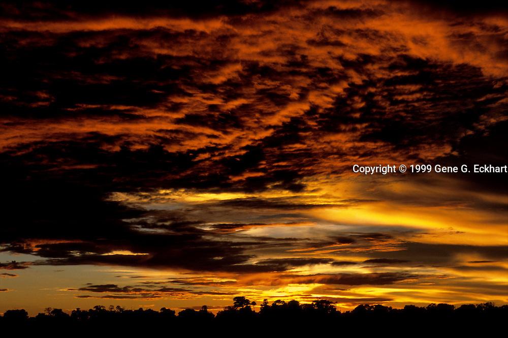 An African sunset in the Okavango Delta - Mombo - Okavango Delta - Botswana