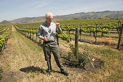 California, San Luis Obispo County: Winemaker Harry Hansen at Edna Valley Vineyards, noted for his Chardonnay. Model released..Photo caluis108-70755..Photo copyright Lee Foster, www.fostertravel.com, 510-549-2202, lee@fostertravel.com