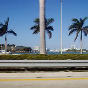Vakantie Miami Amerika, snelweg, highway, auto, vangwail, palmbomen
