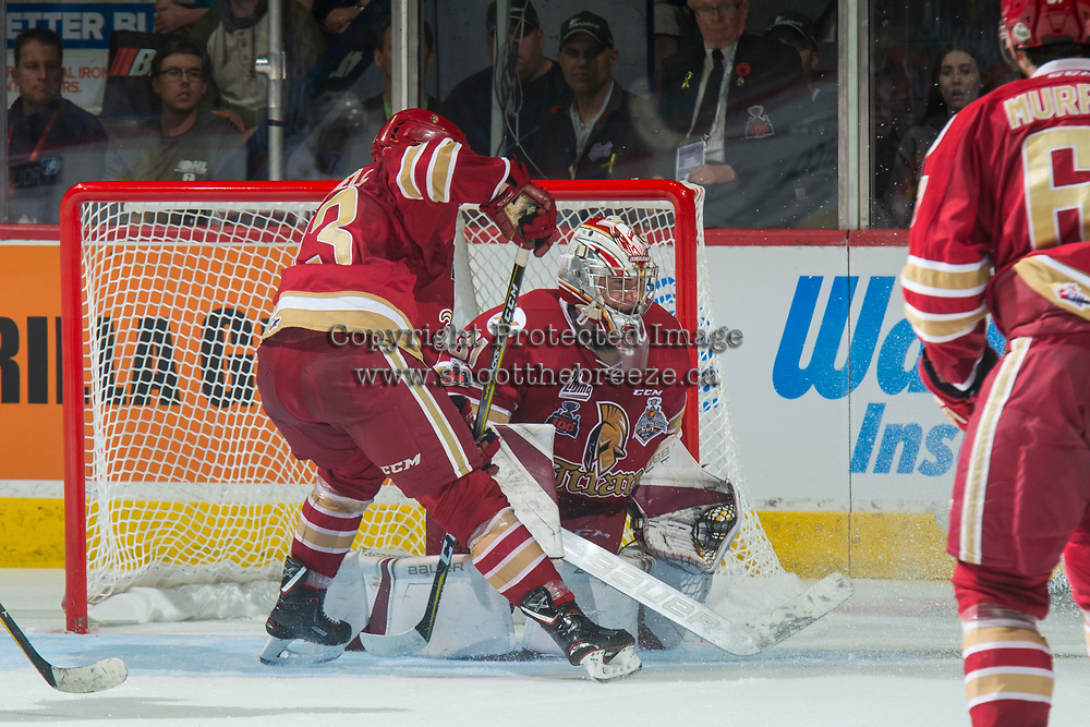 REGINA, SK - MAY 27: Evan Fitzpatrick #31 of Acadie-Bathurst Titan defends the net against the Regina Pats at the Brandt Centre on May 27, 2018 in Regina, Canada. (Photo by Marissa Baecker/CHL Images)