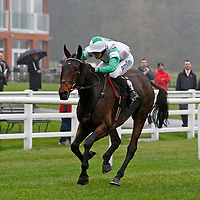 Run To Fly and T J O'Brien winning the 1.40 race