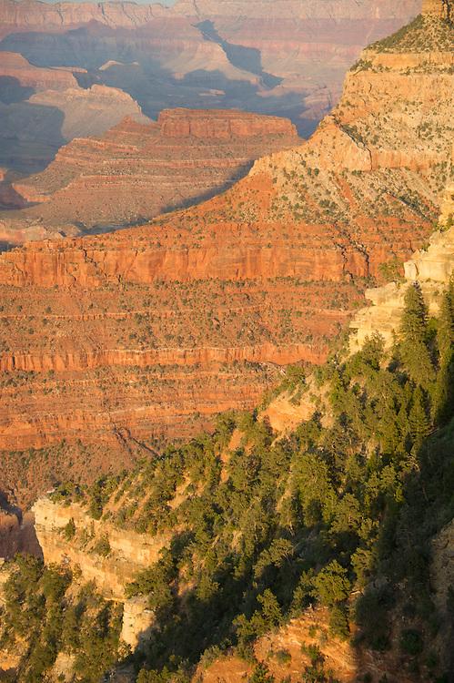 Sedona Arizona Plateaus and Tree-covered Mountains