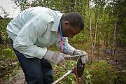 Travailleurs sylvicoles d'origine africaine.