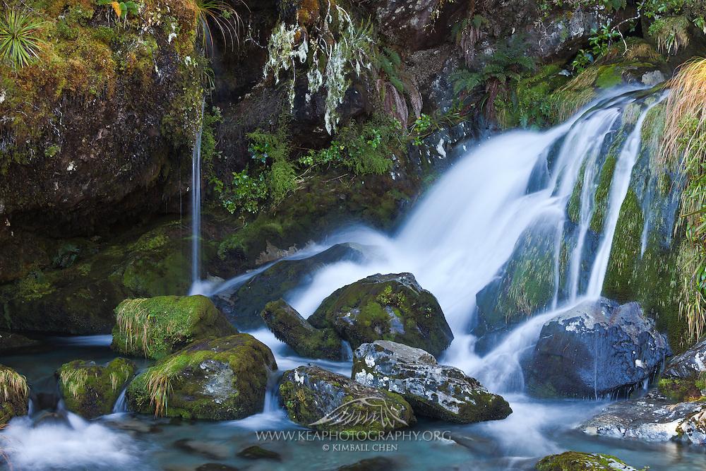 Waterfall, Routeburn Track, Fiordland, New Zealand