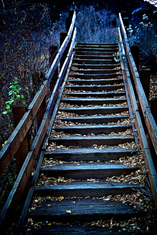 Wooden stairs with leaves near the Logan River in Logan Canyon east of Logan, Utah Nov. 17, 2010.